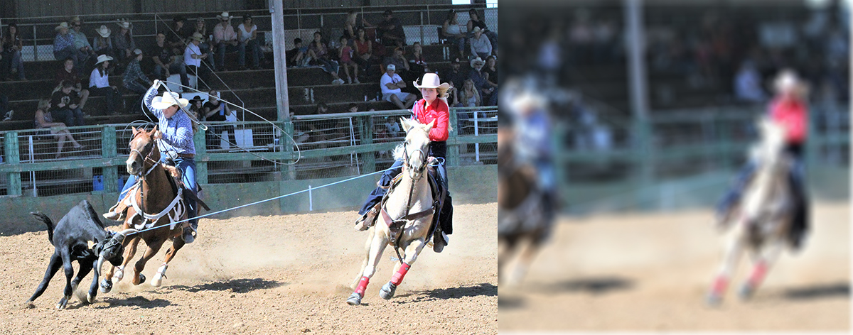California High School Rodeo Association