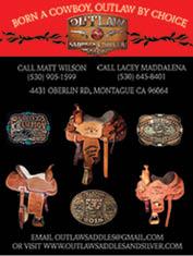 Outlaw Saddle & Silver