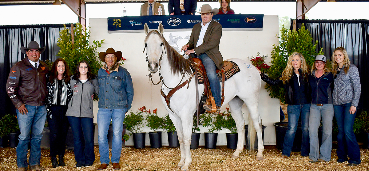 High Selling Horse Moves To California